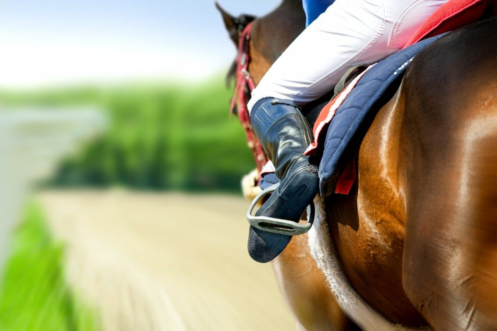 horseback riding gear essentials