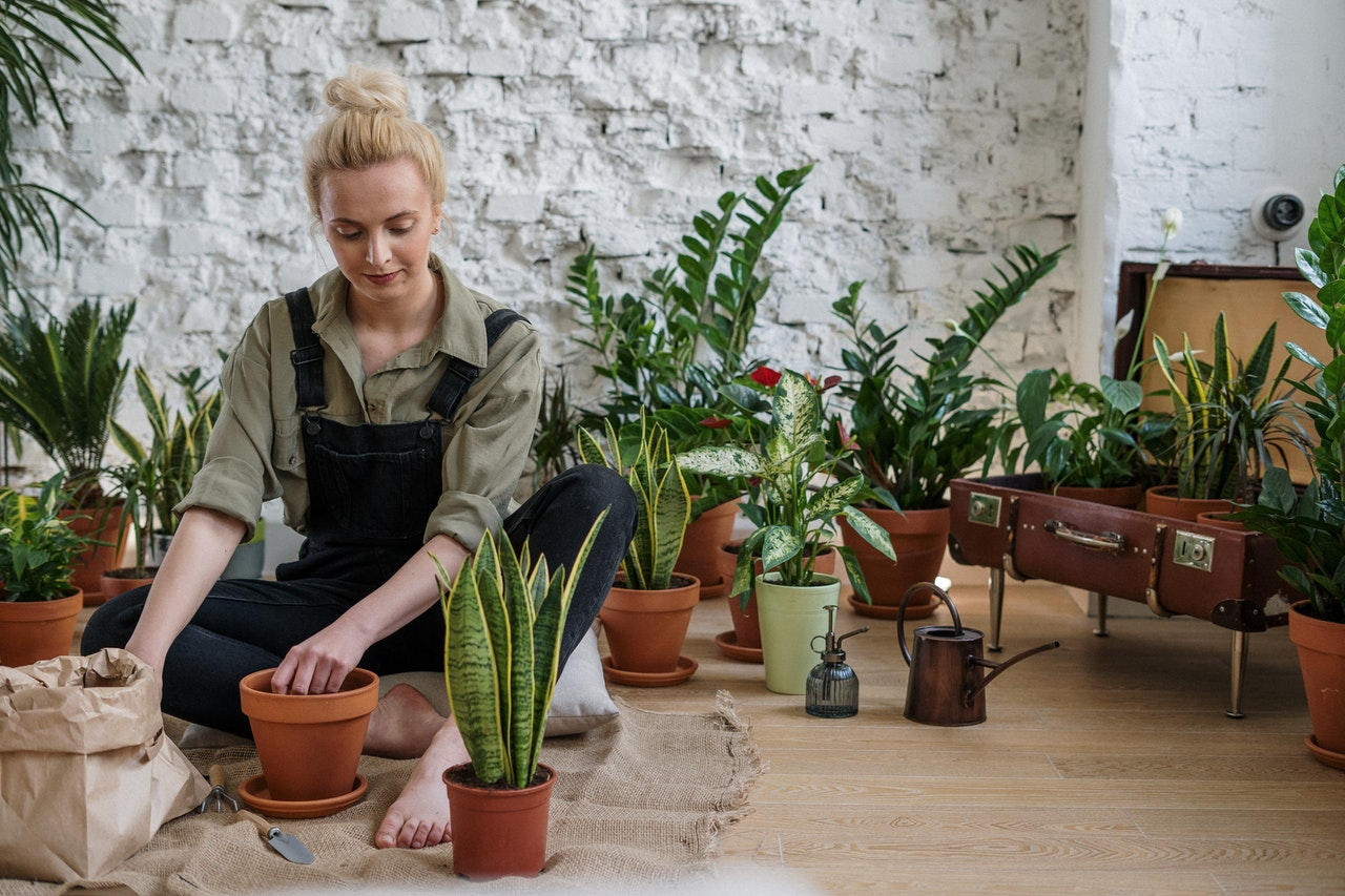 woman organizing her plants